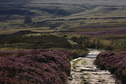 Bronte Country - on the moors near Top Withens